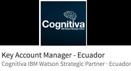 La función de un Key Account Manager según IBM para Cognitiva
