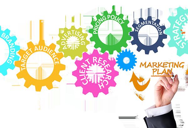 Principios de Estrategia y Planificación de Marketing