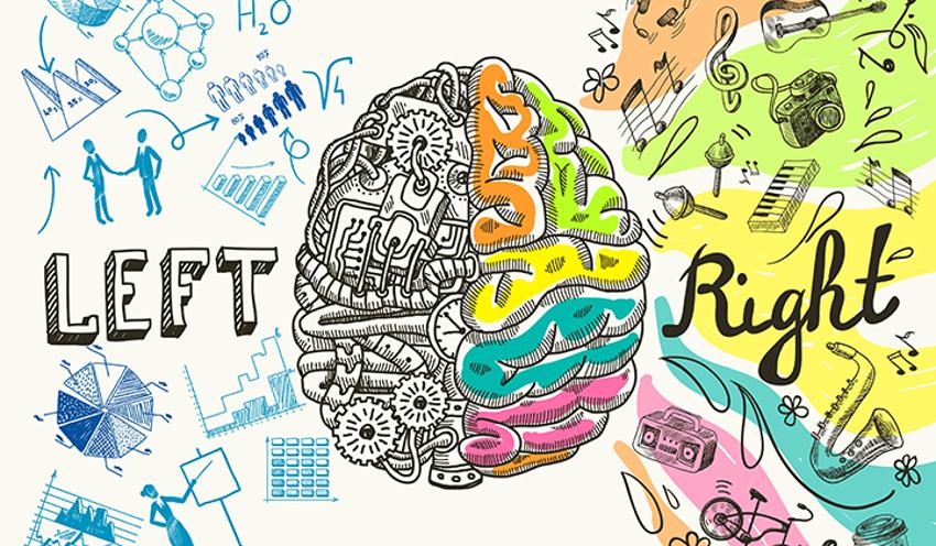 Neuro Oratoria: Hemisferios Cerebrales y Gimnasia Cerebral