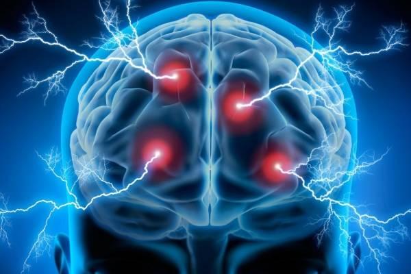 Neuro Oratoria Formación Gerencial